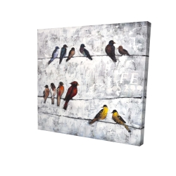 Canvas 24 x 24 - 3D - Colorful birds on branches