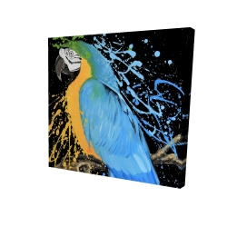 Canvas 24 x 24 - 3D - Blue macaw parrot