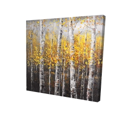 Canvas 24 x 24 - 3D - Sunny birch trees