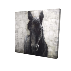 Canvas 36 x 36 - 3D - Black horse