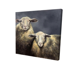Canvas 24 x 24 - 3D - Two sheeps