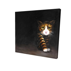 Canvas 24 x 24 - 3D - Discreet cat