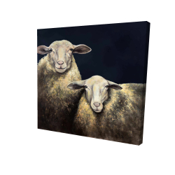 Canvas 24 x 24 - 3D - Two sheep blue background