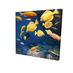 Canvas 24 x 24 - 3D - Fish under the sea