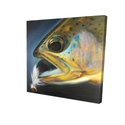 Canvas 24 x 24 - 3D - Golden trout with fly fishing flie