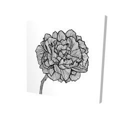 Canvas 24 x 24 - 3D - Peony line