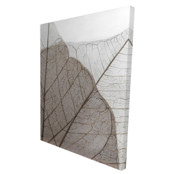 Canvas 36 x 48 - 3D - Translucent dried leaves