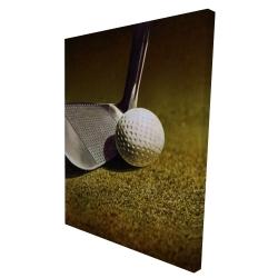 Canvas 36 x 48 - 3D - Golf closeup