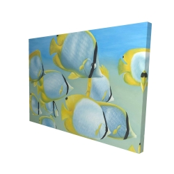 Canvas 36 x 48 - 3D - Butterfly fishes