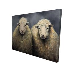 Canvas 36 x 48 - 3D - Wool sheeps
