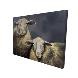 Canvas 36 x 48 - 3D - Two sheeps