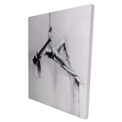 Canvas 36 x 48 - 3D - Dancer on aerial contortion