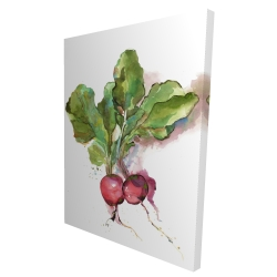 Canvas 36 x 48 - 3D - Watercolor radish