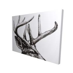 Canvas 36 x 48 - 3D - Roe deer plume