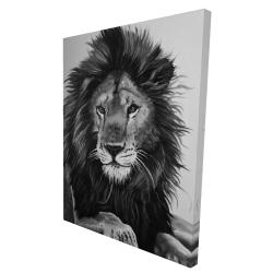Canvas 36 x 48 - 3D - The lion king