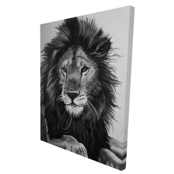 Canvas 36 x 48 - 3D - The lion king