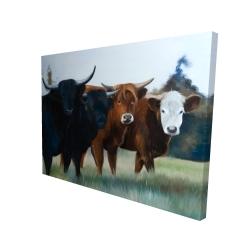 Canvas 36 x 48 - 3D - Four highland cows