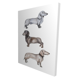 Canvas 36 x 48 - 3D - Dachshund dogs