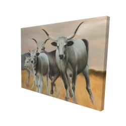 Canvas 36 x 48 - 3D - Nguni breeding