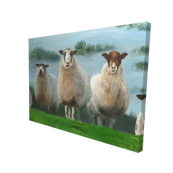 Canvas 36 x 48 - 3D - Flock of sheep