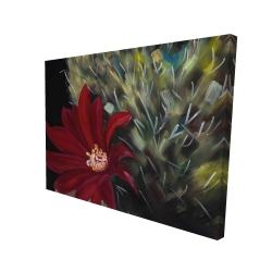 Canvas 36 x 48 - 3D - Echinopsis red cactus flower
