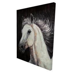 Canvas 36 x 48 - 3D - White star horse