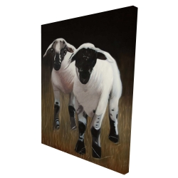 Canvas 36 x 48 - 3D - Two lambs
