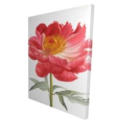 Canvas 36 x 48 - 3D - Pink peony