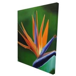 Canvas 36 x 48 - 3D - Bird of paradise flower