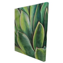 Canvas 36 x 48 - 3D - Watercolor agave plant