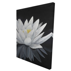 Canvas 36 x 48 - 3D - Lotus flower with reflection