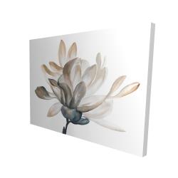 Canvas 36 x 48 - 3D - Softness