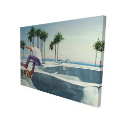 Canvas 36 x 48 - 3D - Skate park california