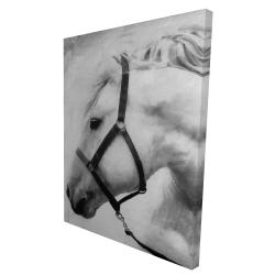 Canvas 36 x 48 - 3D - Darius the horse