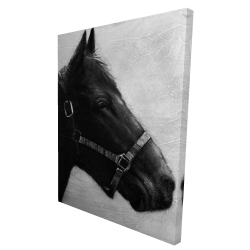 Canvas 36 x 48 - 3D - Gallopin the horse