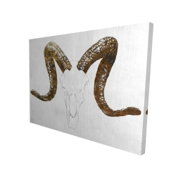 Canvas 36 x 48 - 3D - Aeries skull with brown horns