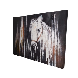 Canvas 36 x 48 - 3D - White horse in the dark