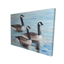 Canvas 36 x 48 - 3D - Canada geese in water