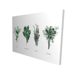 Canvas 36 x 48 - 3D - Fine herbs