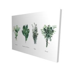 Canvas 36 x 48 - 3D - Fines herbes