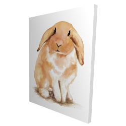 Canvas 36 x 48 - 3D - Lop-rabbit