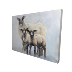 Canvas 36 x 48 - 3D - Sheep family