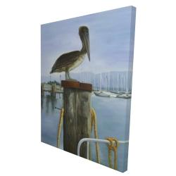 Canvas 36 x 48 - 3D - Pelican