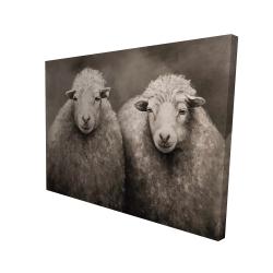 Canvas 36 x 48 - 3D - Sheep sepia