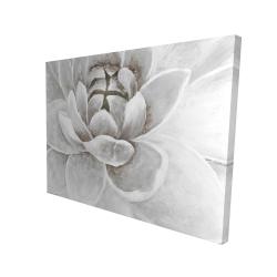 Canvas 36 x 48 - 3D - Delicate white chrysanthemum