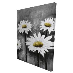 Canvas 36 x 48 - 3D - Daisies at sun