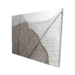 Canvas 48 x 60 - 3D - Translucent dried leaves