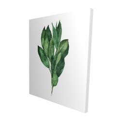 Canvas 48 x 60 - 3D - Bay leaves bundle