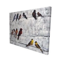 Canvas 48 x 60 - 3D - Colorful birds on branches
