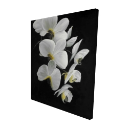 Canvas 48 x 60 - 3D - Beautiful orchids